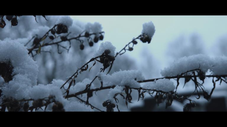 Capture d_écran 2018-02-14 à 13.40.30